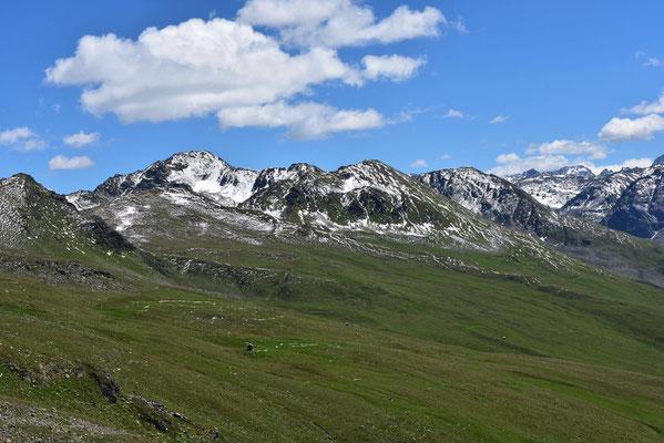Berge, Alpen, Weiden, Täler