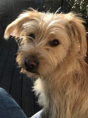 Azubi Lilly (10 Monate)