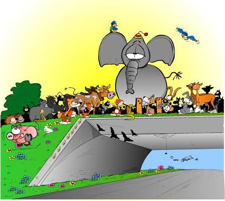 SÜDKURIER 2012: Nach dem Streich auf der B33-Grünbrücke sucht die Singener Neubauleitung nun den Verantwortlichen. Das Tier wartet auf der Baustelle auf seinen Besitzer