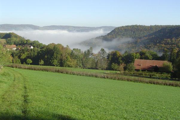 Herbst auf dem Biohof Rüebisberg