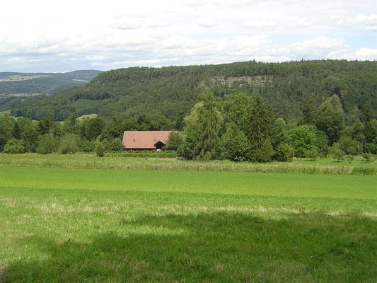 Aussicht zum Biohof Rüebisberg
