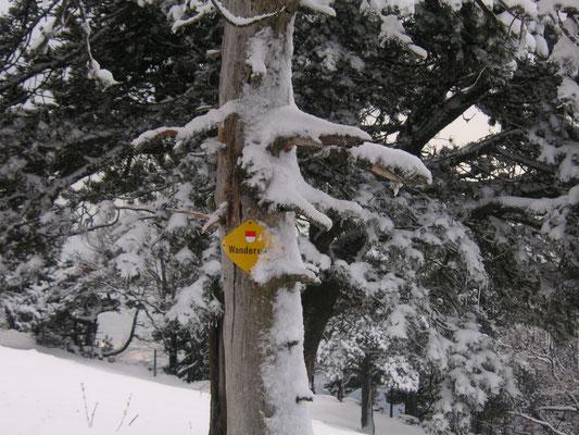 Jura Winterwanderungen