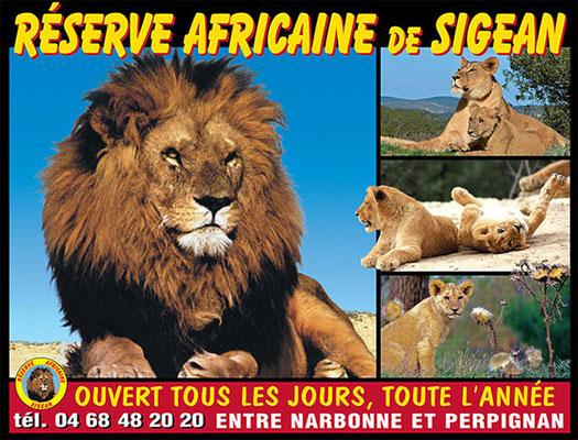 Réserve africaine de Sigean: Sigean à 1h.