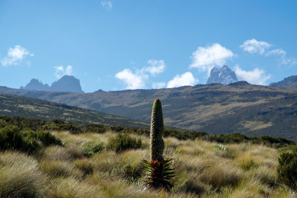 The first time we get to see the massif of Mt. Kenya