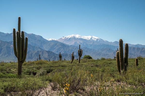 Parque Nacional los Cordones