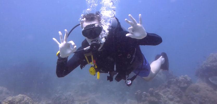 Alles Wunderbar unter Wasser
