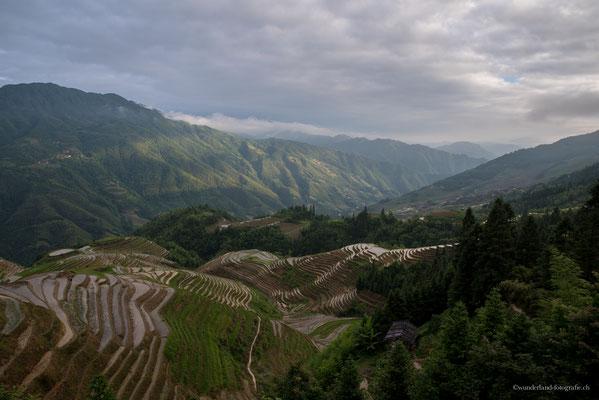 Longsheng Reisfelder bei Ping'an