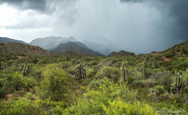 Gewitter in der Nähe von La Rioja