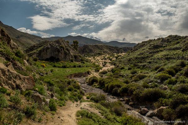 Putre, Altiplano Chileno