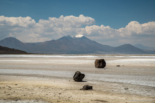 Salar de Surire im Parque Nacional Lauca