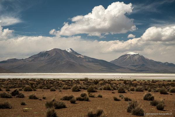 Salar de Surire, Parque Nacional Lauca, Altiplano Chileno