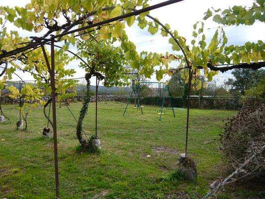 Le terrain attenant, la tonnelle et sa vigne