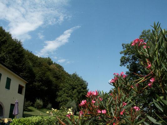 Garten, Col Muson