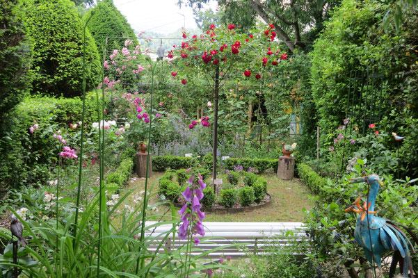 vue du patio des roses depuis le jardin d'ombre