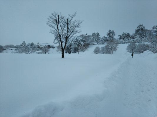 一面真っ白な二の丸公園