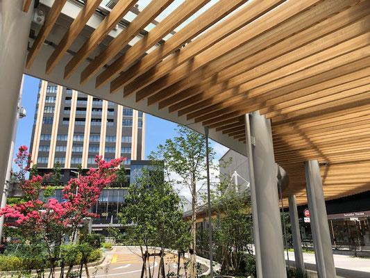 整備された金沢港口の歩道にかかる屋根 木と曲線が金沢らしい