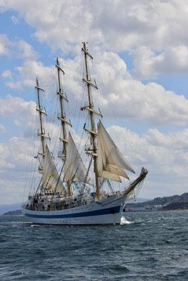 eines von vielen großen Schiffen