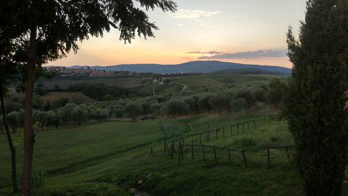 Agriturismo Il Sambuco bei Siena