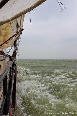 Segeln bei Windstärke 8 im Ijsselmeer