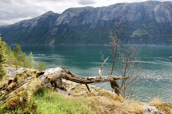 Songesand im Lysefjord