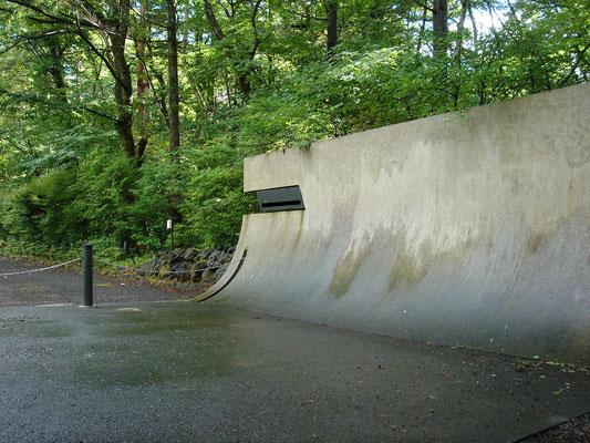 洗い出し仕上げとした土間コンクリートとR型門