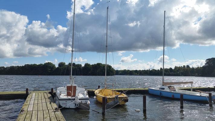 Das gelbe Boot heißt Bienchen - unser Programmkino auch!