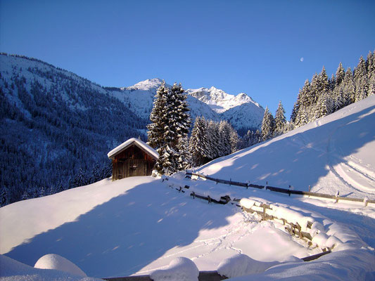 Winterwanderweg im Birkental