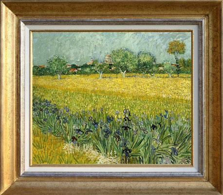 Van Gogh, champ fleuri près de Arles