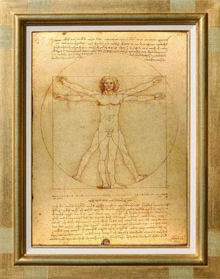 De Vinci, l'homme de vitruve
