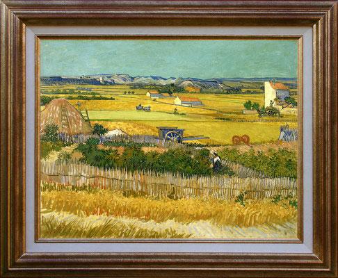 Van Gogh, fenaison