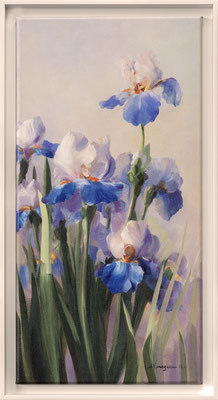 Vernageau, iris French Cancan