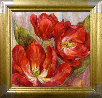 Carson, tulipes