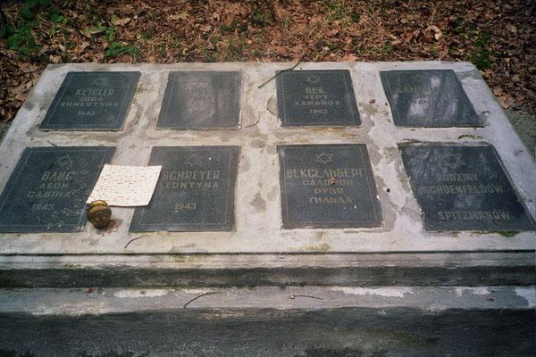 Denkmal für die erschossenen Holocaust Opfer im Wald von Bronica bei Drohobycz