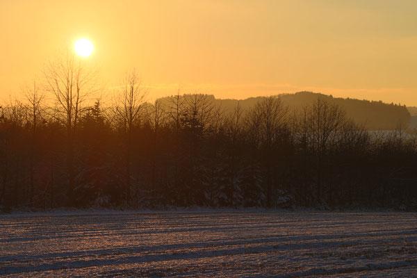 Sonnenuntergang am Mosenberg