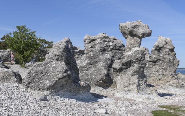 Raukas - Gotland / Sweden