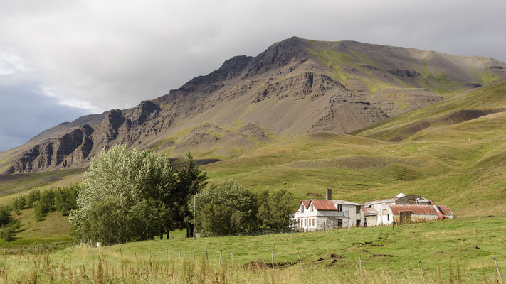 Farm - Westfjord