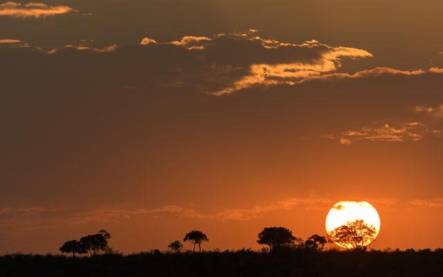 Sunrise - Kenia / Maasai Mara