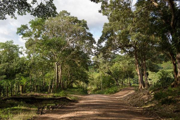 Reserve Natural Miraflor