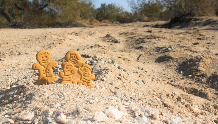 Die Cookie Family begleitet uns ein Stück durch Wüste...