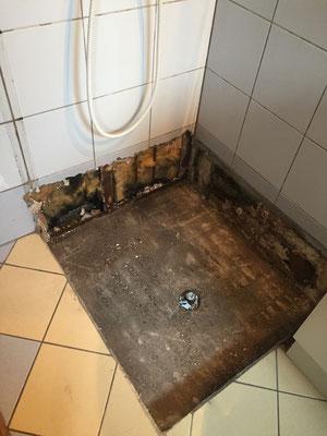 Rénover une petite salle d\'eau basique en MUST de la douche ...