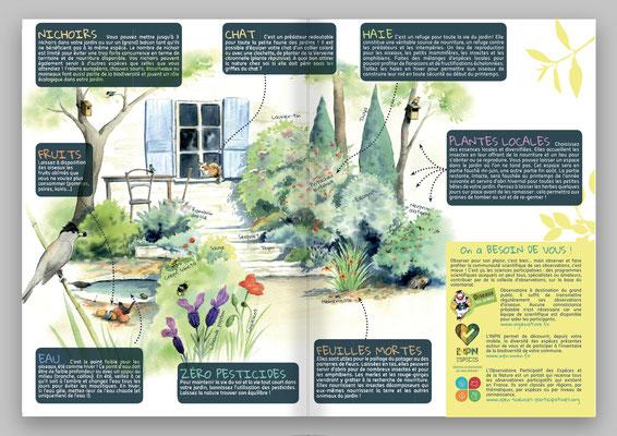 illustration nature, illustrations habitat naturel
