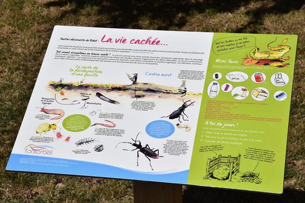 panneaux pédagogiques, nature, sol, illustrations, graphisme, texte, conception, rédaction, illustration