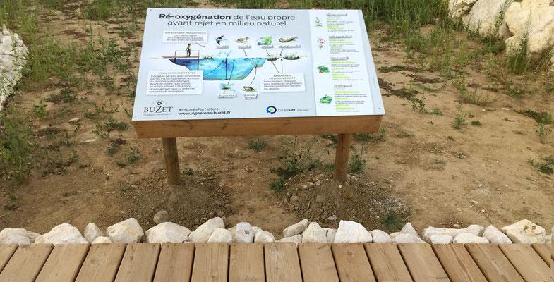 Illustration de la biodiversité au sein du bassin