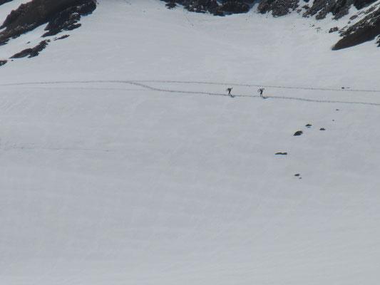 """Das sieht man nicht alle Tage. Zwei """"Wälder mit Bike"""" auf dem Cevedale Gletscher."""