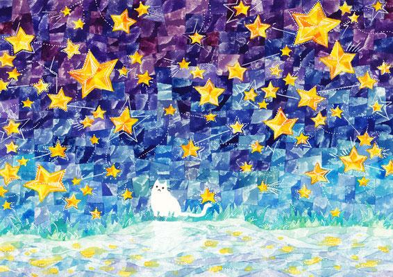 「星とネコ」A4/水彩絵具・ペン