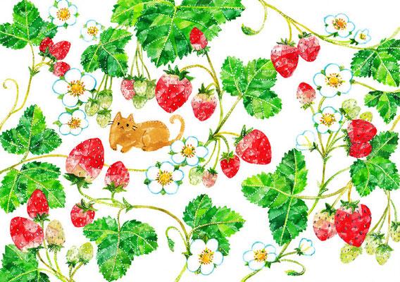 「苺とネコ」B5/水彩絵具・ペン