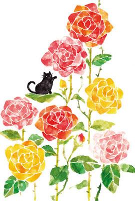 PT-13「薔薇と黒ネコ」S