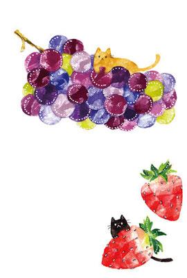 PT-37「葡萄と苺とネコ」