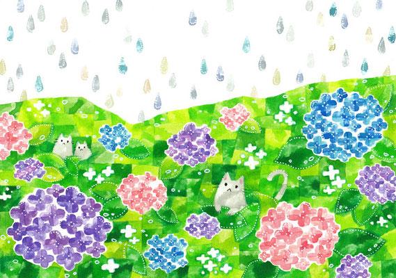 「紫陽花とネコ」B5/水彩絵具・ペン