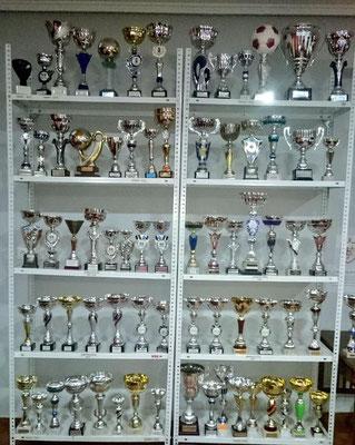 Trofeos cómo Villapalacios FS 2008-2014